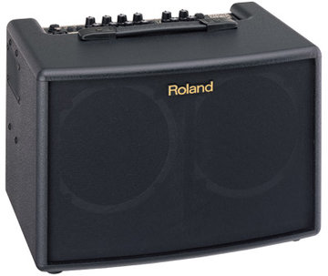 Roland AC-60 Compact Stereo Acoustic Amplifier, 2x 30W